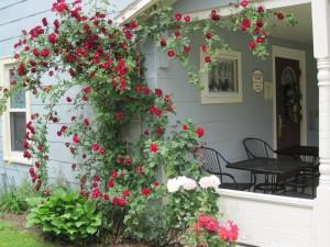 Rosepointe Cottage Tea Room
