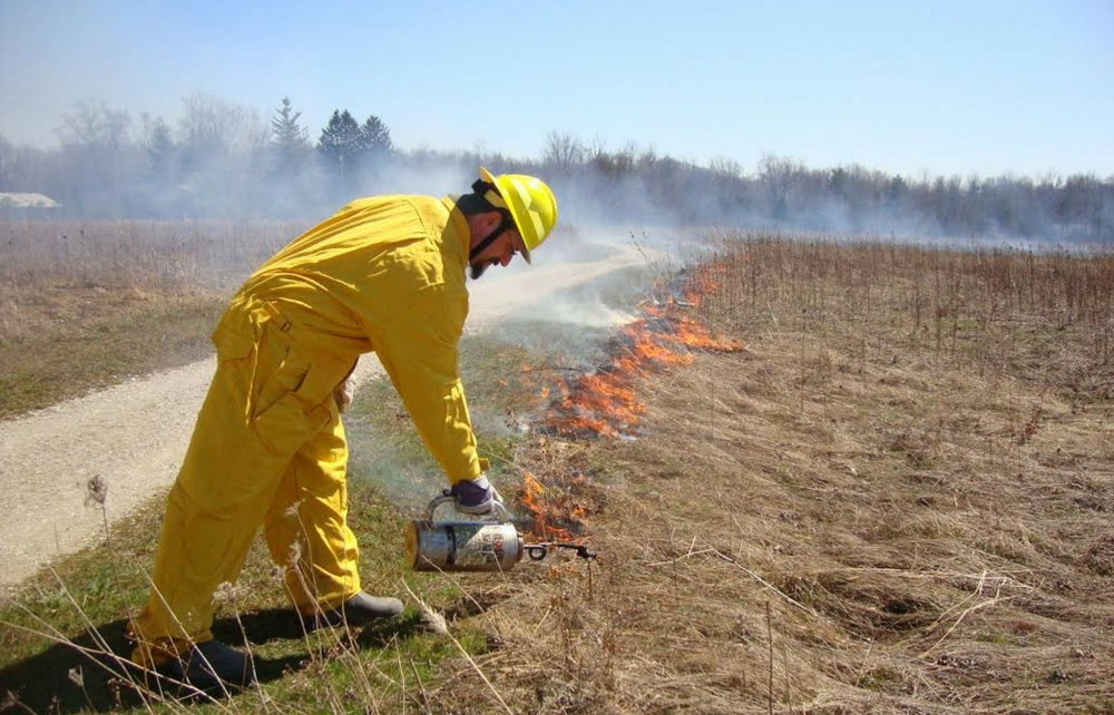 "Fire in the Parks ""Hotline"" – Experience a Controlled Burn at Frohring Meadows"