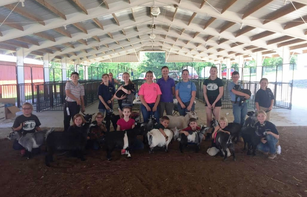 """The Pygmy Connection Holds Pygmy Goat """"Fun Show""""!"""