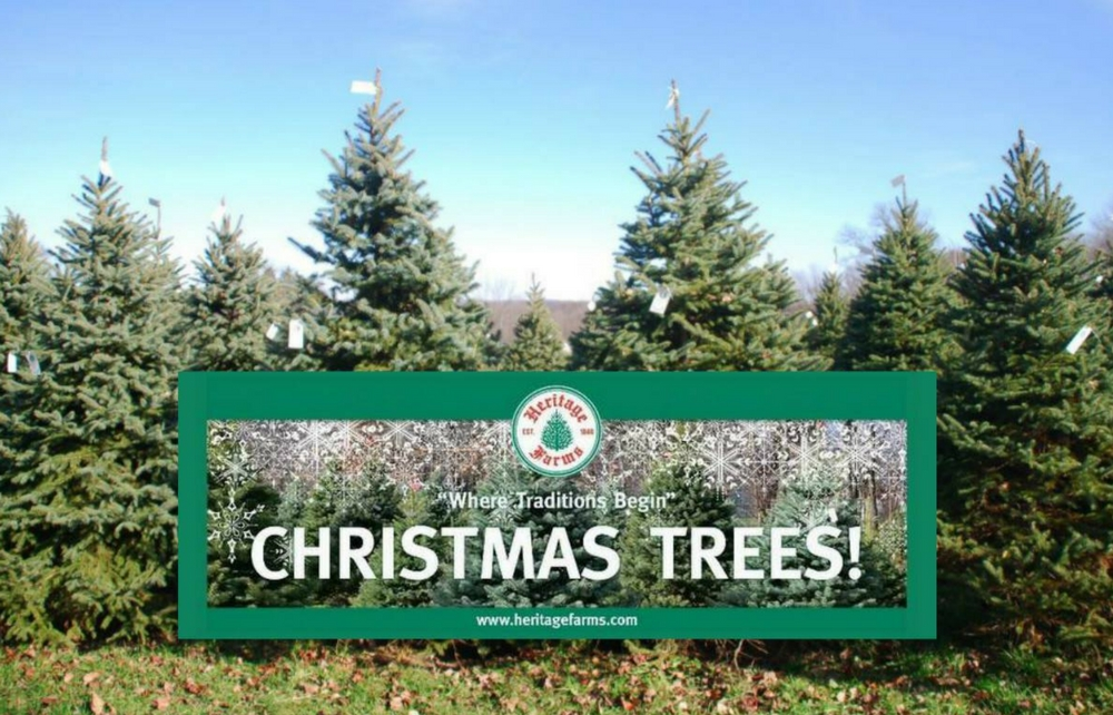 Family Christmas Traditions are Alive and Well at Heritage Farms