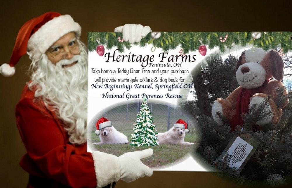 Heritage Farms Teddy Bear Christmas Trees