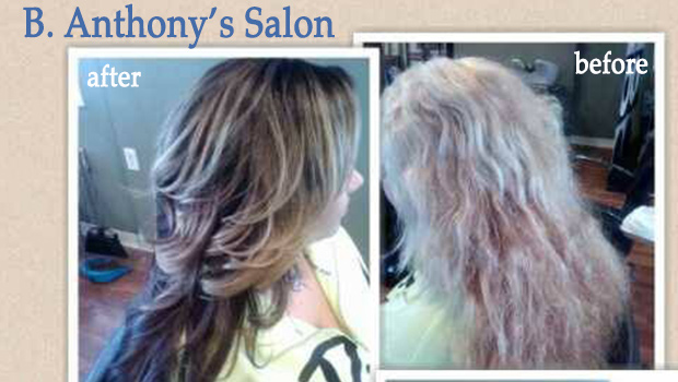 B Anthony Salon If There's a Will, T...
