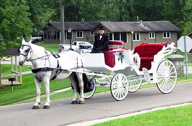 Horse Drawn Carriage Rides at Punderson Manor Lodge