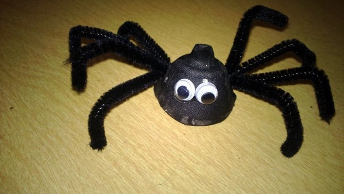 egg carton spider FB