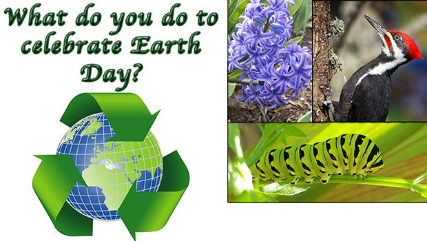 Earth Day All Year