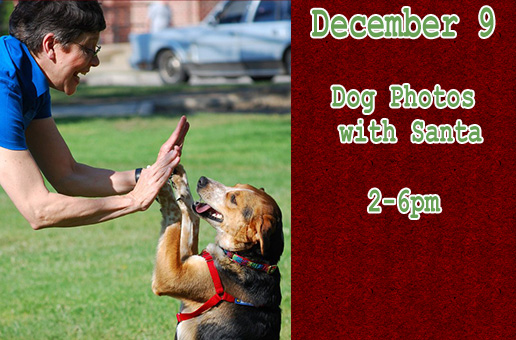 Dog photos with Santa Dec. 9th