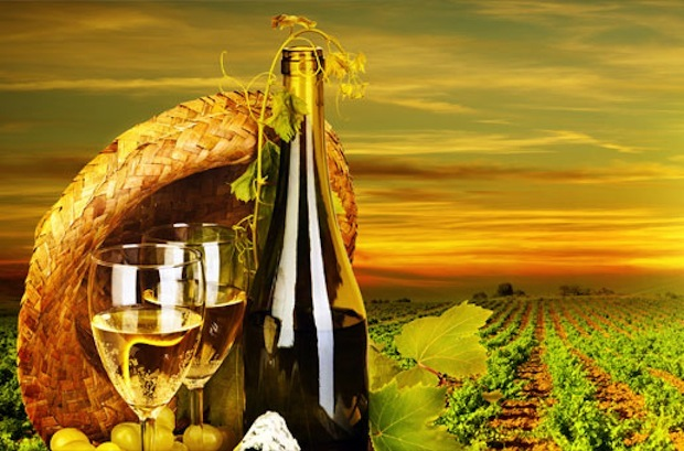 Harvest Dinner with Wine