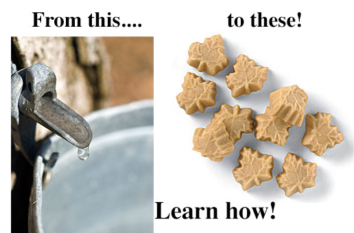 Learn how to make maple candy