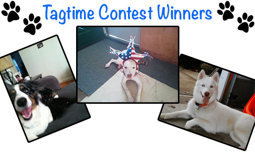 Tagtime Contest Winners